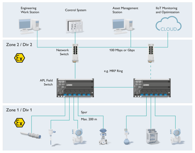 Setup of an APL network for compact plants in which APL switches directly connect the spur ports to the Ethernet