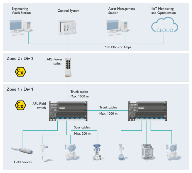 Setup of an APL network for extensive plants in the process industry which uses the trunk and spur topology